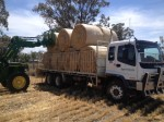 We keep a fresh supply of hay in stock.